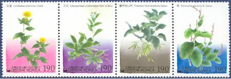 Barvířské rostliny
