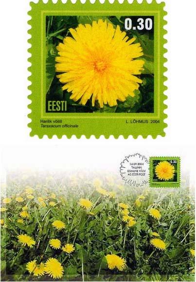 Estonsko 2/2004