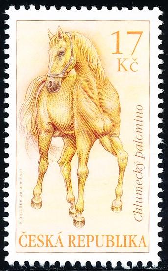 Koně - Chlumecký palomino