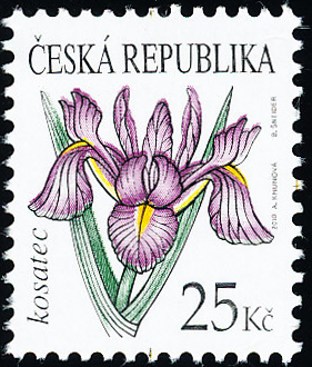 Krása květů - Kosatec 25 Kč