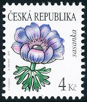 Krása květů - Sasanka