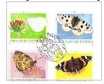 Motýli Lichtenštejnska