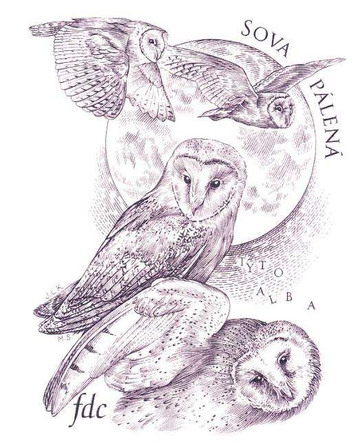 Ochrana přírody - Sovy - aršík