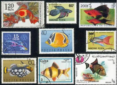 Proč právě akvarijní ryby na našich známkách?
