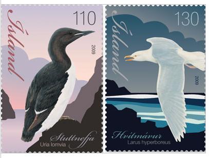 Ptáci Islandu