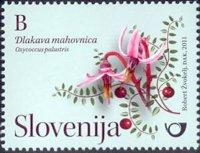 Slovinsko 2/2011