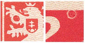 Zpravodaj 1/2006: KOŠICKÝ ARŠÍK - výrazné nahodilé vady
