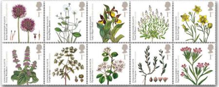 250. výročí Královské botanické zahrady v Kew