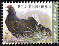Belgie 4/2012