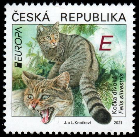 EUROPA - Ohrožená národní divoká zvěř - kočka divoká
