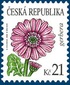 Krása květů - Gerbera