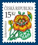Krása květů - Lichořeřišnice