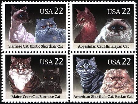 Rozprávky z poštového múzea - Mimoriadna udalosť