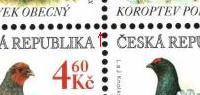 Zajímavosti ČR 1998