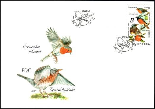 Zpěvní ptáci v našem okolí - Drozdovití