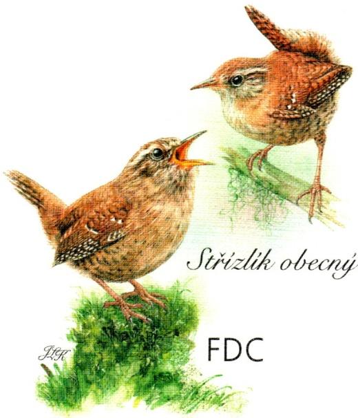 Zpěvní ptáci v našem okolí - Strnadovití