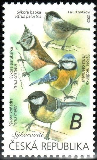 Zpěvní ptáci v našem okolí - Sýkorovití
